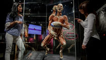 Amsterdam Combo: Body Worlds & City Sightseeing Hop-On Hop-Off Tour