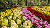 Keukenhof Garden Entrance Ticket with Transfers from Amsterdam, Amsterdam, Attraction Tickets