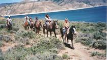Personalized Horseback Rides around Lake, Colorado, Horseback Riding