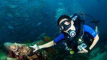 Discover Scuba Diving, Los Cabos, Scuba Diving