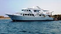 Dolphin Spotting Overnight Cruise to Sataya with Scuba Diving, Marsa Alam, Dolphin & Whale Watching