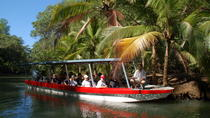 Damas Island Mangrove Boat Tour from Jaco, Jaco, Day Cruises