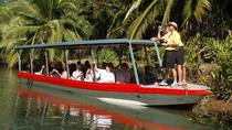 Damas Island Mangrove Boat Tour from Manuel Antonio, Quepos, Day Cruises