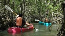 Damas Island Mangrove Kayaking Tour from Jacó, Jaco, Kayaking & Canoeing
