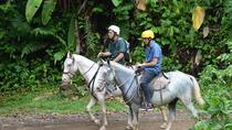Horseback Riding Tour from Manuel Antonio, Quepos, Horseback Riding