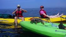 Manuel Antonio Ocean Kayaking & Snorkeling, Quepos, Kayaking & Canoeing