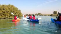 Full-day Private Al Zubarra Fortress and Al Thahkira Kayaking tour from Doha, Doha, Kayaking & ...