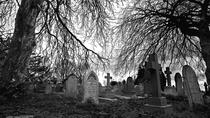 Williamsburg Ghosts and Witches Combination Tour, Williamsburg, Ghost & Vampire Tours