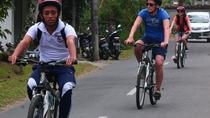Bali Downhill Cultural Cycling Tour, Bali, Private Sightseeing Tours