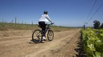 Full-Day Private Cycling Tour Through Vineyards including Picnic from Cape Town, Cape Town, Day ...