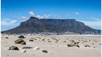 Full Day Robben Island and Table Mountain Tour from Cape Town, Cape Town, Cultural Tours