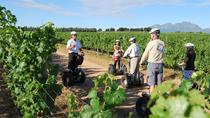 Segway Vineyard Tour with Wine Tasting and Picnic: Private Day Tour from Cape Town, Cape Town, ...