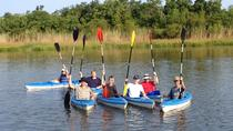 Delta Wildlife Kayak Tour, Mobile, Kayaking & Canoeing