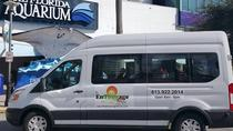 Surf & Turf Sightseeing Tours, Tampa, City Tours