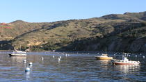 Catalina Island Two Harbors Tour from Avalon, Catalina Island, Day Cruises
