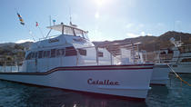 Catallac Cocktail Cruise, Catalina Island, Day Cruises