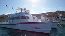 Happy Hour Cruise on Catalina Island, Catalina Island, Ziplines