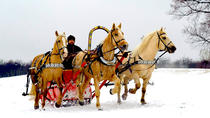 2-Hour Horse Sledge Tour from Riga, Riga