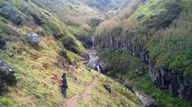 Walking Tour: Ribeira Funda and Furnas from Ponta Delgada, Ponta Delgada, Walking Tours