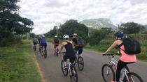 Bangalore's Countryside on a Bicycle, Bangalore, Cultural Tours