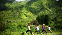 Jungle Waterfall Hike: Beachfront Yoga and Sacred Paths of Pali-Manoa, Oahu, Hiking & Camping