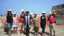 Shore Excursion: Cartagena City Tour, Cartagena, Ports of Call Tours