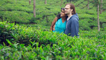 Bangladesh Discovery Tour Explore the Tea Gardens of Sreemangal, Dhaka, Cultural Tours