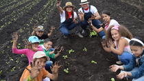 Colombia Educational Tour: Sustainable Farming, Bogotá, Cultural Tours