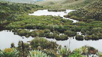 Cundinamarca Community Tour: Rural Culture and Wildlife, Colombia, Cultural Tours