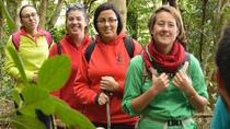 La Laguna Hiking Tour: Biodiversity in the Anaga Mountains, Tenerife, Hiking & Camping