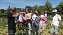 Lyon Educational Tour: Eco-Friendly Gardening, Lyon, Cultural Tours
