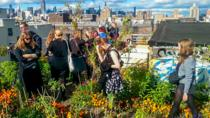 New York City Garden Tour: Explore Green Spaces and Sustainability, New York City, Walking Tours