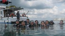 Singapore Scuba Tour: Diving in the Reefs of Pulau Hantu, Singapore, Scuba Diving