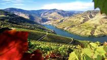 Authentic Douro Wine Tour Including Lunch, Porto