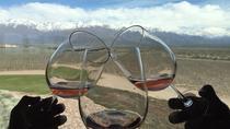 Private Tour: Lujan de Cuyo Wine Region from Mendoza, Mendoza, Air Tours