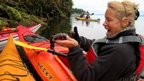 Ketchikan Kayak Eco-Tour, ケチカン