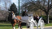 Beacon Hill Park Carriage Tour
