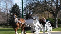 Victoria Carriage Tour Including James Bay, Victoria, Air Tours