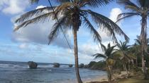 Barbados Tour der Harrison's Cave, Cherry Tree Hill und Animal Flower Caves mit Mittagessen, ...