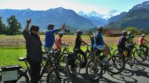 Interlaken 3-Hour Guided E-Bike Tour with a Farm and Ancient Villages Visit, インターラーケン