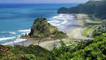 Full-Day Piha and Waitakere Eco-Tour Including Lunch from Auckland, Auckland