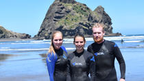 Full-Day Piha and Waitakere Eco-Tour with Surf Lesson from Auckland, Auckland, Surfing & Windsurfing