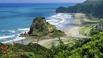 Full-Day Piha and Waitakere Ecotour Including Lunch from Auckland, Auckland, Day Trips