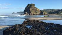 Private Tour: Piha and Waitakere Eco-Tour with Surf Lesson from Auckland, Auckland, Surfing & ...