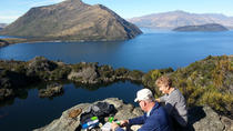 Wanaka Nature Encounter: Lake Cruise and 4WD Safari, Wanaka, Day Cruises