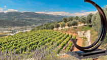 4-Hour Provence Organic Wine Tasting Tour from Nice, ニース
