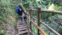 Doi Inthanon Private Tour with Trek, Lunch from Chiang Mai, Chiang Mai, Multi-day Tours