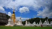 Private Chiang Mai Tempel Tour mit Doi Suthep und Wat Umong, Chiang Mai, Tagesausflüge