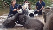 Private Day Tour in Chiang Dao and Chiang Mai, Chiang Mai, Full-day Tours
