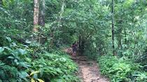 Trekking at the Monk Trail Hidden Temple ( Pha Lat Temple ) Doi Suthep Temple, Chiang Mai, ...